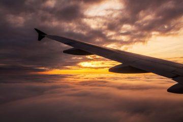 אל על: חזרה הדרגתית של טיסות נוסעים ומטען