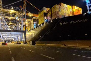 נמל חיפה: ״פול הגוררים״ תורם לשבירת שיאים